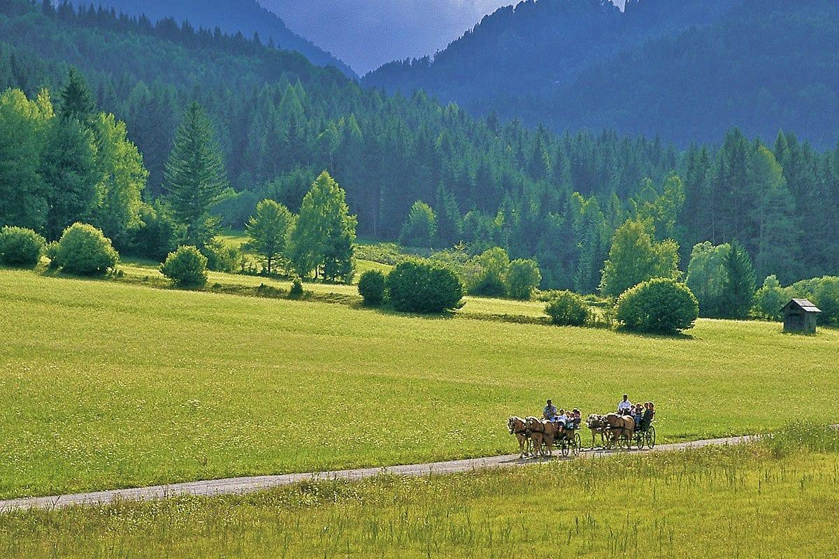 Naturpark-Weissensee-Pferdekutsche-Reiten-Badeurlaub-Kutschenfahren-Ferienwohnunegn-Hoffmann-14