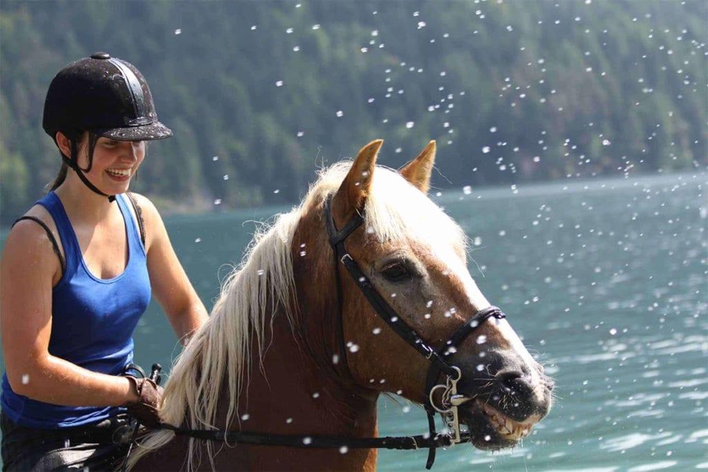 Reiten und Kutschenfahren am Weissensee