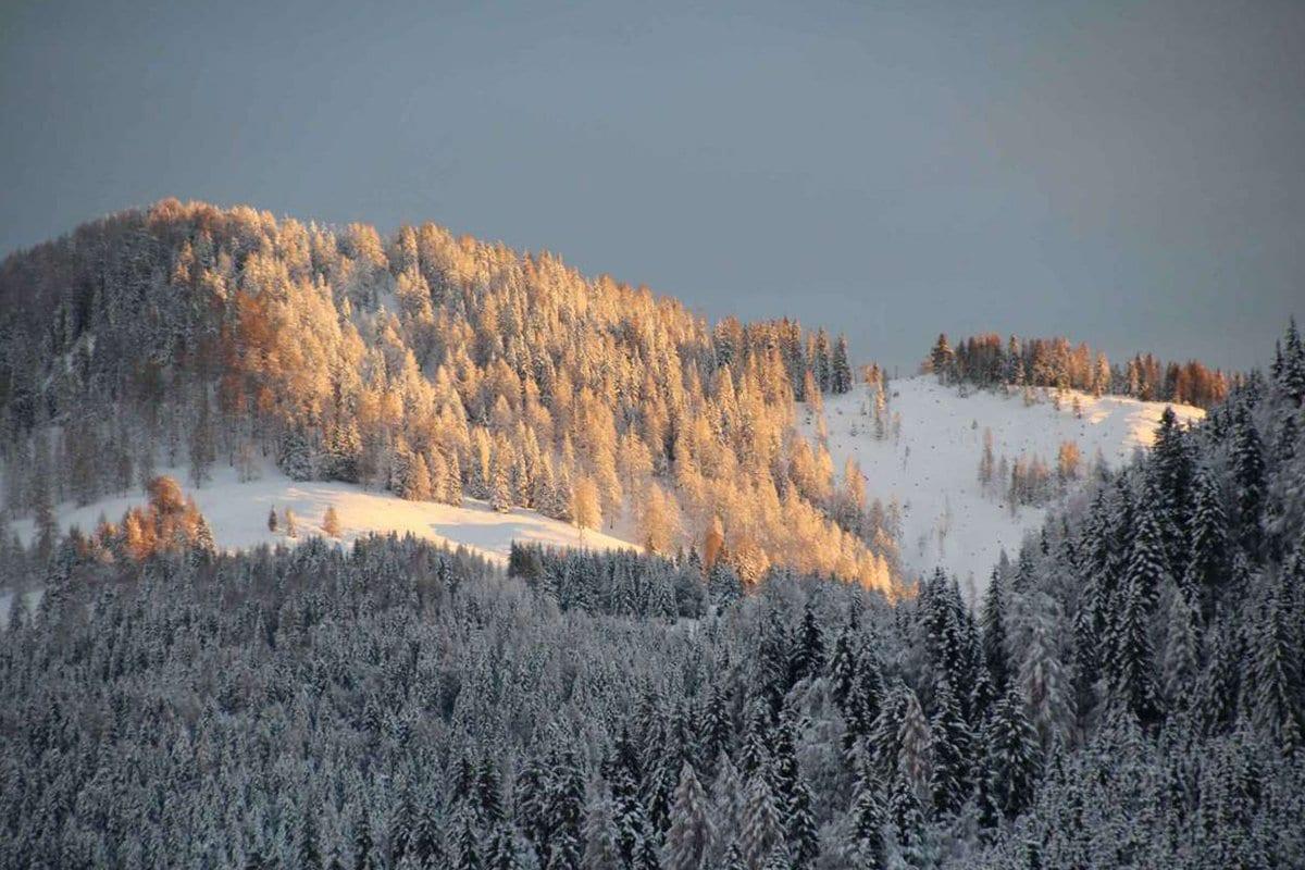 Schnee-Sonne