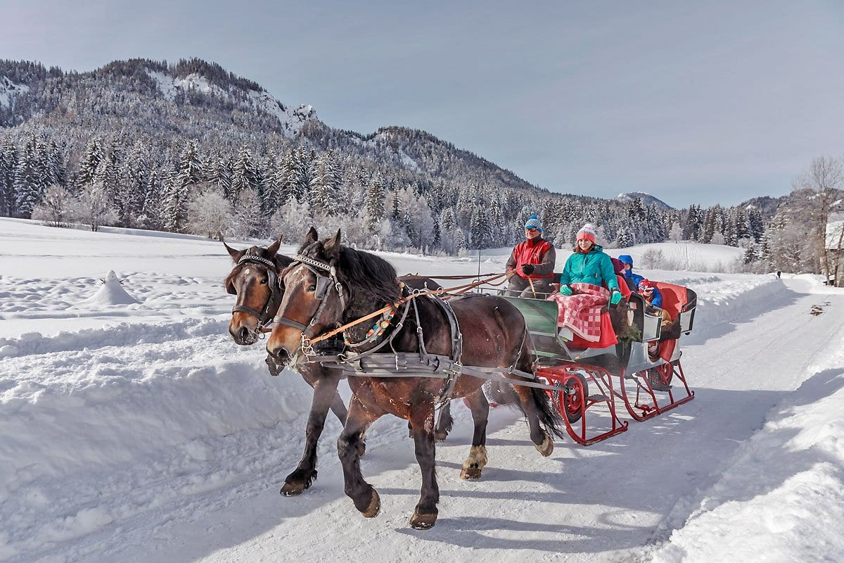 Naturpark-Weissensee-Kutschenfahren-Pferde-reiten-Winterurlaub-Schneeparadies-Ferienwohnungen-Hoffmann-9