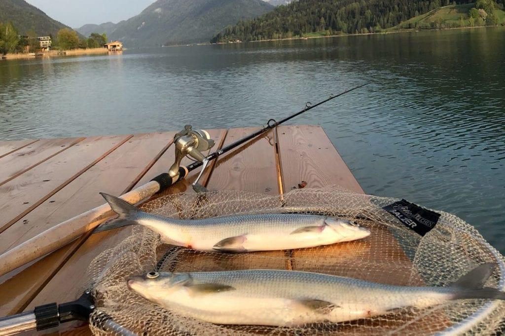 Anfischen am Weißensee