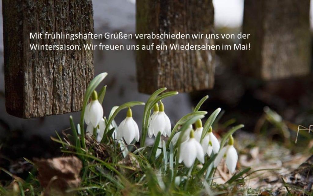 Frühlingshafte Grüße vom Weissensee!