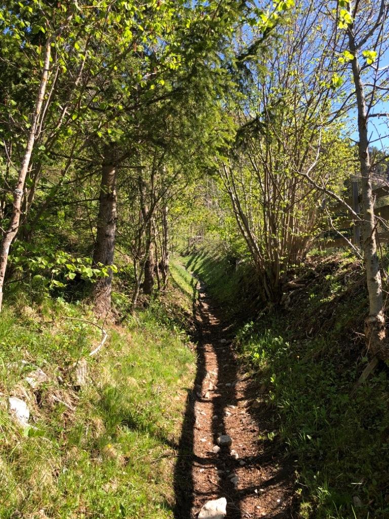 Wanderurlaub Weissensee