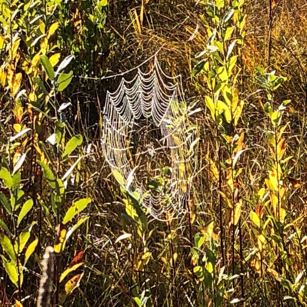 Herbsterinnerungen am WeissenseeHerbsterinnerungen am Weissensee
