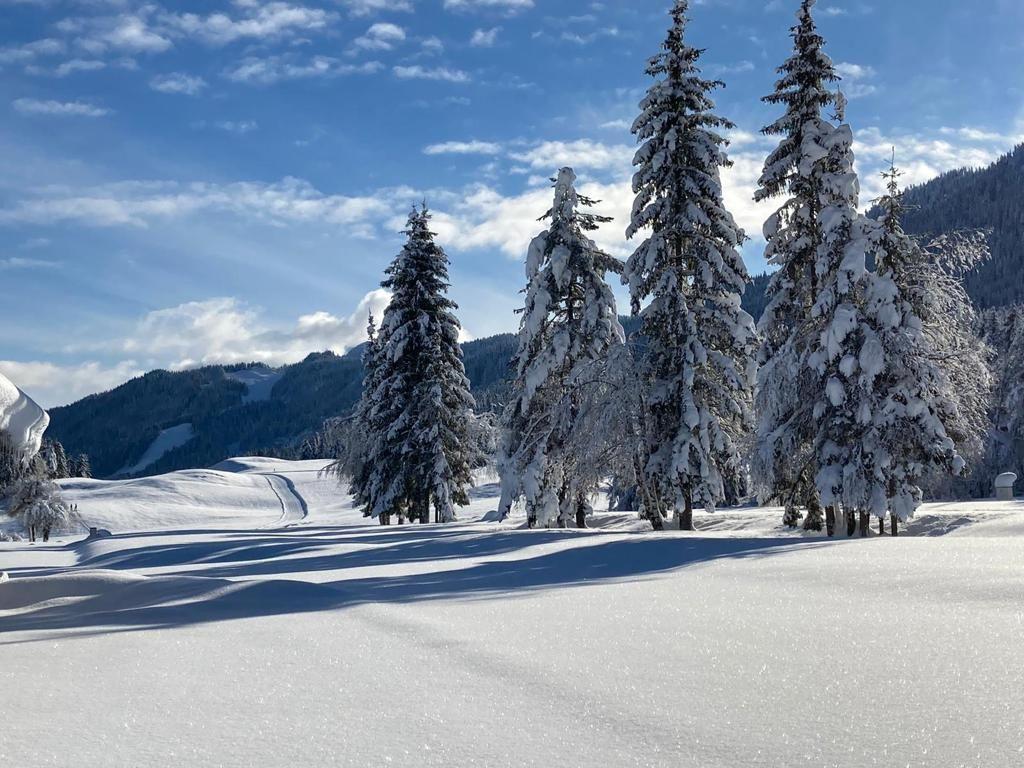 Wintermärchen am Weissensee