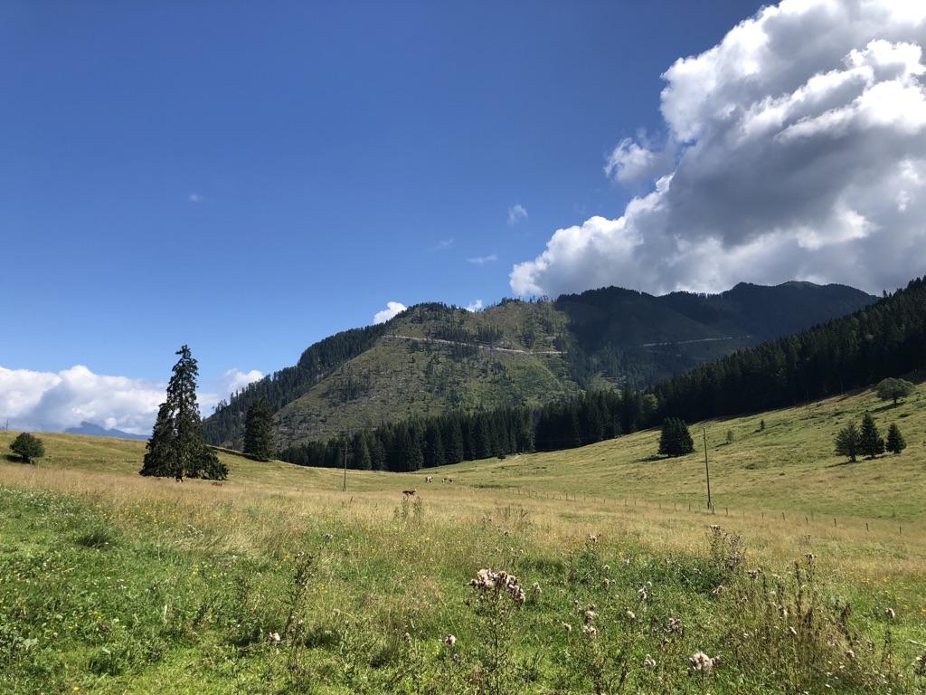 Wandern/Mountainbiken Ferienhof Hoffmann Weissensee